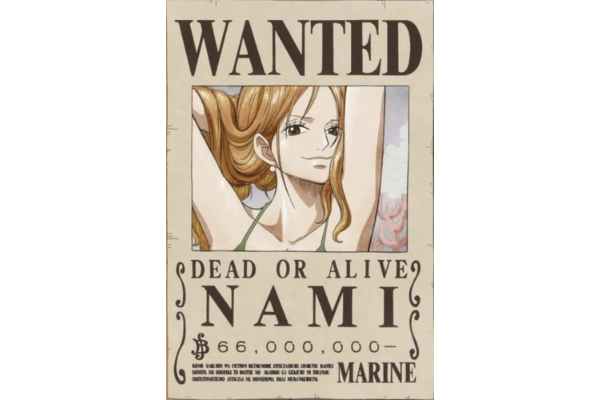 A Picture of Nami's Bounty